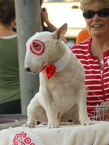target dog logo. Hilarious Dog Halloween