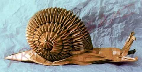 File:Snail origami.jpg - Wikipedia | 245x480